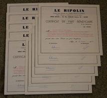 RFRA152 Scripophilie Actions - LE RIPOLIN X10 ALGERIE PART BENEFICIAIRE ALGER 1968 - Industrie
