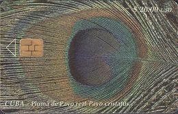 Cuba CUB- 089 Feather Of A Peackok  (30.000x) - Cuba