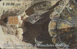 Cuba CUB- 149 Turtle Laying Eggs (Eretmochelys Imbricata) - Schildkröte (30.000x) - Cuba