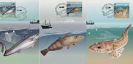 Australia 2019 Sustainable Fish Set Of 3 Maximum Cards - Maximumkarten (MC)