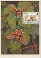 Jersey Carte Maximum 1991 Papillons 545 - Jersey