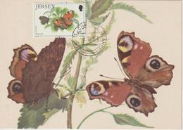 Jersey Carte Maximum 1991 Papillons 546 - Jersey