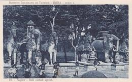 CARTOLINA - INDIA - TANJORE- IDOLI CUSTODI AGRESTI - India