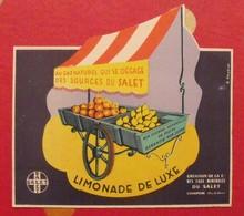 étiquette Limonade Au Gaz Naturel Qui Se Dégage Des Sources Du Salet. Courpière Puy De Dôme. Vers 1960 - Advertising