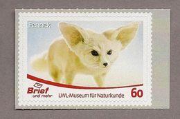 Privatpost - Brief Und Mehr - LWL-Museum / Fennek Oder Wüstenfuchs (Vulpes Zerda) - Dogs