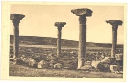 CPA TUNISIE - FERIANA - Les Quatre Colonnes Romaines - Tunisia
