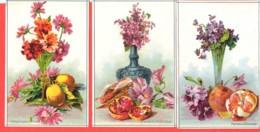 Lot 3 Chromos Bon Point Fleurs Et Fruits Lilas, Pansées, Soucis, Figues, Mandarines Citrons - Chromos