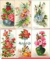 Lot 6 Chromos Bon Point Fleurs ,Myosotis, Azalées, Cognassier,Narcisse, Lys - Chromos