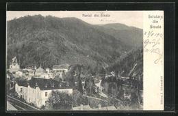 AK Sinaia, Gesamtansicht - Roumanie