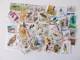 Lot # 16 - Lot Van 100+ VOGELS, Birds, Oiseaux, Kilowaar Off Paper, Worldwide, Vrac Niet Getrieerd - Oiseaux
