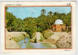 SOUVENIR   DE   TOZEUR      RIVIERE  ET  MARABOUT  DANS L' OASIS       (VIAGGIATA) - Tunisia