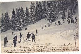 ENV. DE CHEXBRES :le Ski. Plaisir D Hiver.1906.ANIMEE.ETAT CORRECT.PETIT PRIX.COMPAREZ!!! - VD Vaud