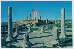 THUBURBO  MAJUS    LE TEMPLE  DE  MERCURE ET LE CAPITOLE               (NUOVA) - Tunisia