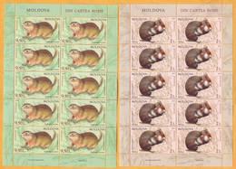 2019 Moldova Moldavie Red Book. European Hamster (Cricetus Cricetus)  Speckled Ground Squirrel (Spermophilus Suslicus) - Roedores