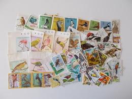 Lot # 22 - 100+ Vogels: Oiseaux, Birds Worldwide Off Paper, Vrac, Kilowaar Niet Getrieerd, Lot Zoals Op Foto - Oiseaux