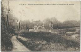 Sainte-Honorine-des-Pertes-Chemin Creux Et Ombragé (Corne D'angle Bas à Droite,voir Scan) (CPA) - Sonstige Gemeinden