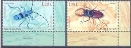 2019. Moldova, Red Book Of Moldova, Insects, 2v,  Mint/** - Moldavia