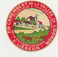 V 91 / ETIQUETTE DE FROMAGE CAMEMBERT   DE LA VALLEE DE L'OGNON LIEGEON   CHASSEY  (HAUTE SAONE) - Formaggio