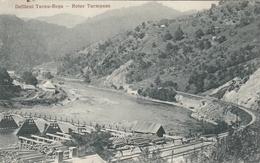AK - ROTER TURM PASS (Pasul Turnu Roșu) - Passenge Mit Brücke über Die Donau  Und Eisenbahnlinie 1917 - Rumänien