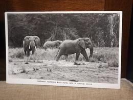 CARTE POSTALE ELEPHANT NAMANGA RIVER HOTEL BOX 39 NAIROBI KENYA AK CPA - Unclassified
