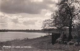 Avaray La Loire Au Tertre - Other Municipalities