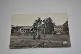 61 Sainte Gauburge  Haras Et Chateau De La Louviere - Otros Municipios