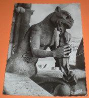 Paris Chimères De Notre-Dame Le Rongeur Scultura CARTOLINA Viaggiata 1965 - Sculture