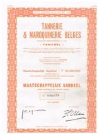 """Titre Ancien - Tannerie & Maroquinerie Belge """" Tamabel """"- Titre De 1973 - - Industrie"""