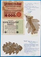 """MILITARIA Souvenir Champagne Et Rhénanie Feuilles D'arbres """"Jeanne"""" """"Canon"""" Travail De Poilu Première Guerre Mondiale - Historische Documenten"""