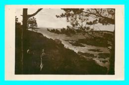 A763 / 421  22 - Env De PENVERN La Mer Vue à Travers Les Pins - Autres Communes