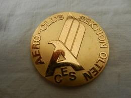 Médaille De Table En Bronze 25 Ans Aéro Club Olten 1972 - Allemagne
