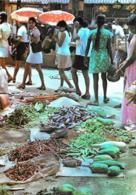[MD3084] CPM - SRI LANKA CYLON - WAYSIDE MARKET PLACE - VILLAGE DAMSELS QUEUE - Non Viaggiata - Sri Lanka (Ceylon)