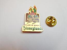 Beau Pin's , Disney , Disneyland , Avec époxy - Disney