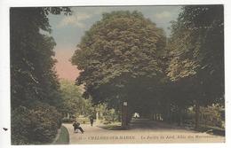 31 - CHÂLONS SUR MARNE.- Le Jardin Du Jard. Allée Des Marronniers - Châlons-sur-Marne