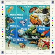 Malta 1999 Marine Life Fishes Jellyfish MS MNH - Vissen