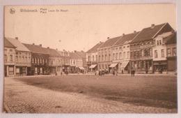 WILLEBROEK 1929 Plaats LOUIS DE NAEYER Anime Winkels Delhaize Frères Au Bon Marché / Uitg. Imp. J. Emmers, Willebroeck - Willebroek