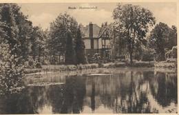 CPA - Belgique - Heide - Hortenciahof - Kalmthout