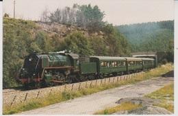 CP - TRAINS - LOCOMOTIVES - Locomotive à Vapeur 29.013 De 1945. - Trains