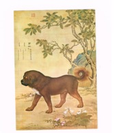 National Palace Museum,Taipei.One Of The Ten Prized Dogs.Carte 18 Cm X 12 Cm - Taiwan