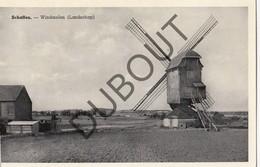 Postkaart-Carte Postale SCHAFFEN/DIEST Windmolen  (o673) - Diest