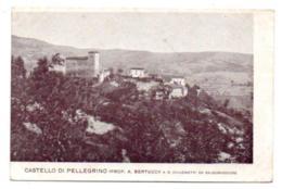 (Italie) Emilia-Romagna 056, Pellegrino Parmense, Castello Di Pellegrino, Dos Non Divisé - Italia