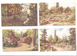 FOUR KEW KEW GARDENS AREA FLOWERS SURREY POSTCARDS - Surrey