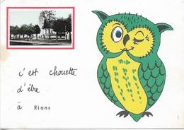 OISEAUX - C'EST CHOUETTE D'ETRE À RIANS (18) - 1 VUE + 1 CHOUETTE - CPSM - VIERGE - - Birds