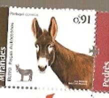 Portugal ** & Autochthonous Breeds Of Portugal, Mirandês Donkeys 2019 (5777) - Esel