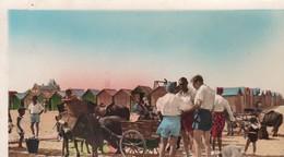14 / RIVA BELLA / LA PLAGE / ATTELAGE ANES ET PONEYS / CIRC 1951 - Riva Bella
