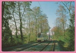 CP - TRAMWAY - STIB - Ligne 39 Montgomery - Ban Eik - Motrice 7005. - Tramways