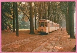 CP - TRAMWAY - SNCV - Ligne BRUXELLES-ALOST - Motrice S 9745 Et Remorques - Av Des Gloires Nationales En 1970. - Tramways
