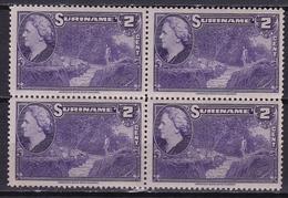 Suriname 1945 Koningin Wilhelmina 2 Cent Violet Waterval NVPH 222 In Postfris Blokje - Suriname ... - 1975