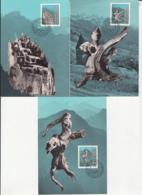 LEGENDS, THE DISTRUCTION OF TRISONA, CM, MAXICARD, CARTES MAXIMUM, OBLIT FDC, 3X, 1984, LIECHTENSTEIN - Contes, Fables & Légendes