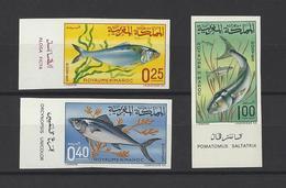 MAROC.  YT   N° 516/516  ND  Neuf **  1967 - Maroc (1956-...)
